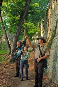 Interpreter lead park programs are a great way to experience the diverse flora and fauna of the park.