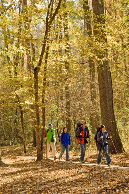 "Beautiful hardwood and pine forests make for great hiking throughout ""The Natural State."""