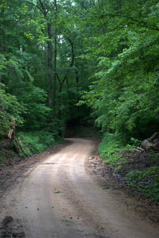 A portion of the Great River Road passes through Mississippi River State Park.