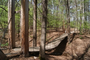 The Swinging Bridge on the Falls Branch Trail.