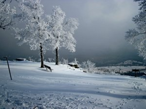 A Winter view from Mount Nebo State Park