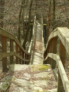 Steps and Bridge on the River Corridor Trail.