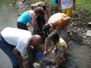 Park Guests take part in a seining program.
